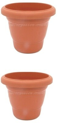 Regular Terraccotta plastic pot  (8 inch) (set of 2)