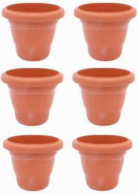 Regular Terraccotta plastic pot  (8 inch) (set of 6)