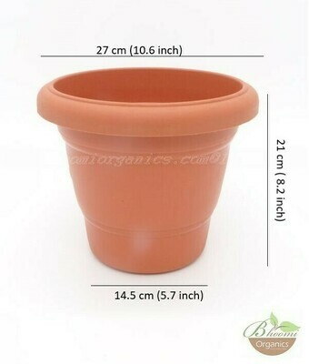 Regular terracotta  pot (10 inch)