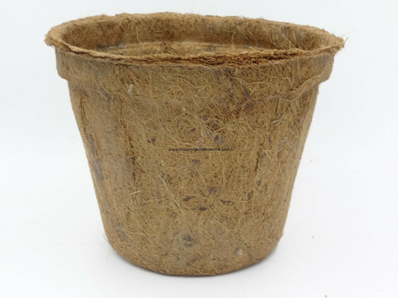 Coco pot ( 8 inch )