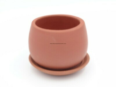 ​Terracotta succulent pot with plate