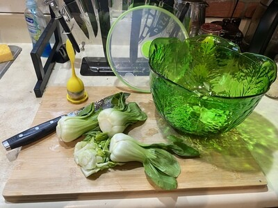 Salad Saver