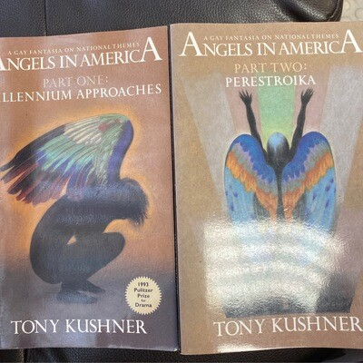 Angels in America Part  I & II by  Tony Kushner