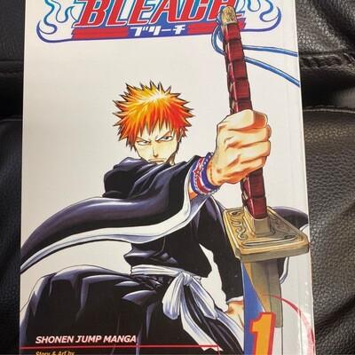 Bleach Volume 1