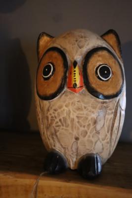 Ornamental Wooden Owl - 25cm