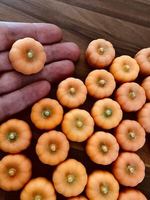 Dinky Pumpkins