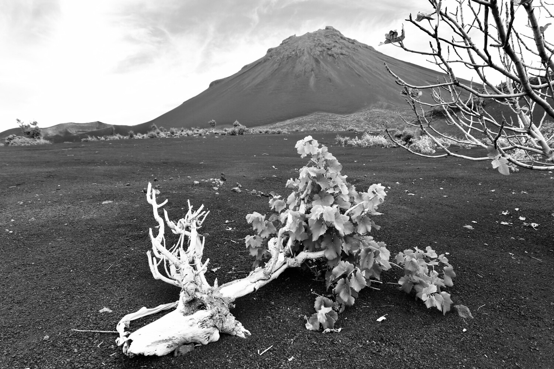 Pico Grande, Cap Vert