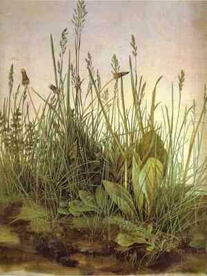 Pintura clásica y de vanguardia (muestra: Albrecht Dürer)     (4 artículos)