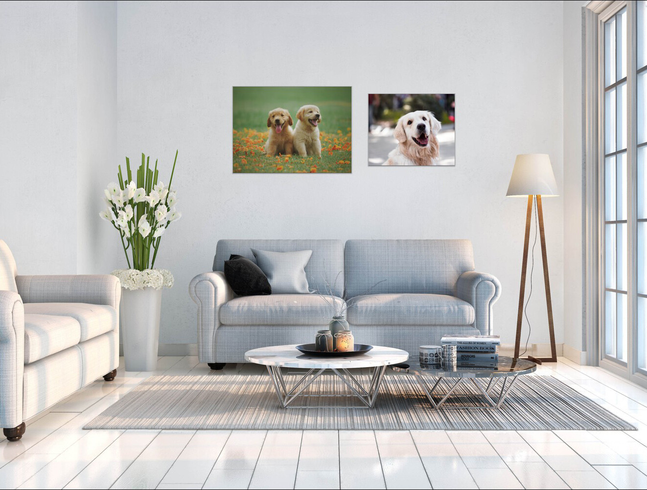 """Your Pets Photo On Canvas 20"""" x 16"""" (51cm x 41cm) others sizes available"""