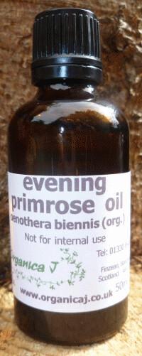 Evening Primrose Oil (oenothera biennis)