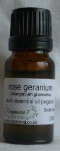 Rose Geranium (pelargonium graveolens)
