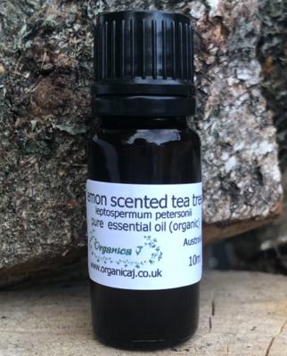 Lemon Scented Tea Tree (leptospermum petersonii)