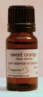 Sweet Orange (citrus sinensis)