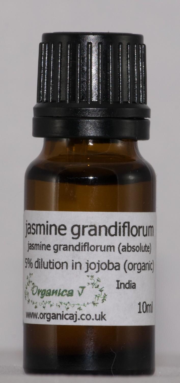 Jasmine Grandiflorum Absolute