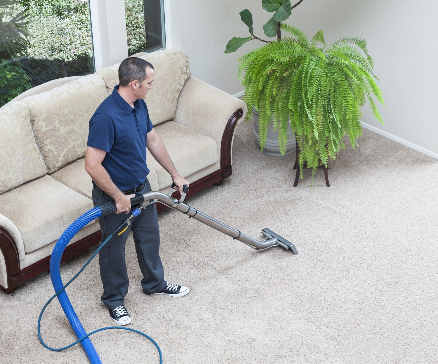 Carpet Cleaning - Stairs and Landing