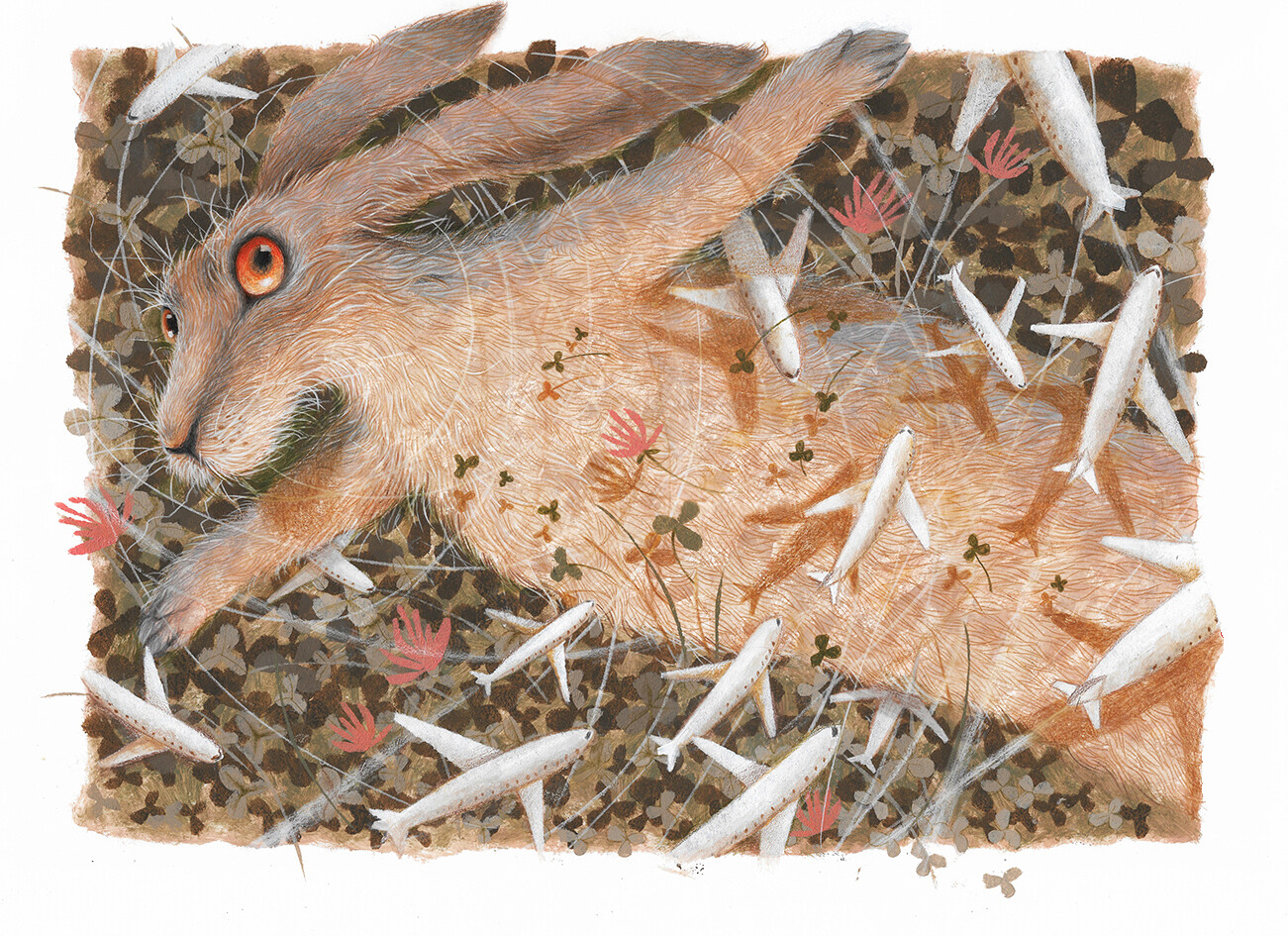 Hare and Airplanes
