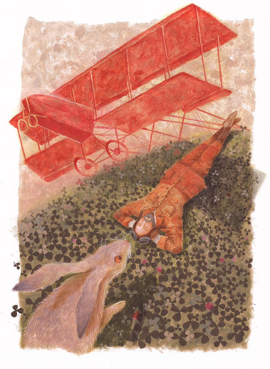 Pilot, Hare, Airplane