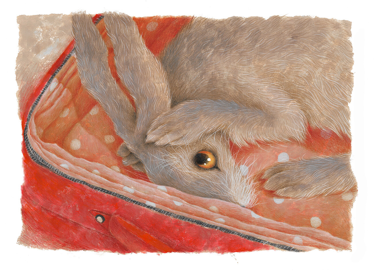 Hare in a Suitcase