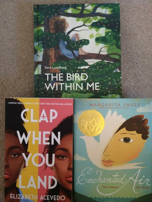Young Adult Book Bundle - 3 books
