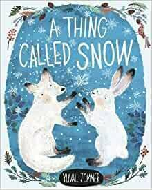 A Thing Called Snow by Yuval Zoomer (hardback)