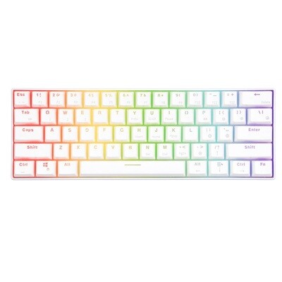 RK ROYAL KLUDGE RK61 Wireless RGB 60% Mechanical Gaming Keyboard, Ultra-Compact Bluetooth Keyboard with Tactile Outemu Switches, Compatible for Multi-Device Connection