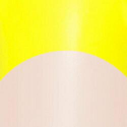 Lemon Fizz Tips