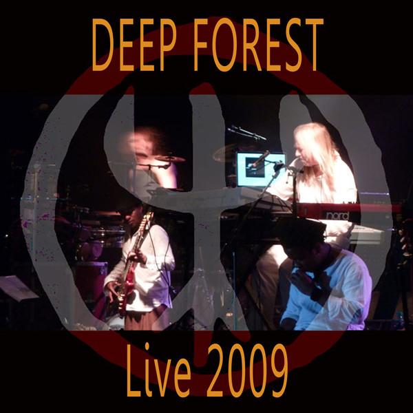 Deep Forest Night Bird Live