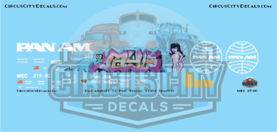 Pan Am Railways MEC 50' FMC Boxcar 31902 HO Scale Decal Graffiti