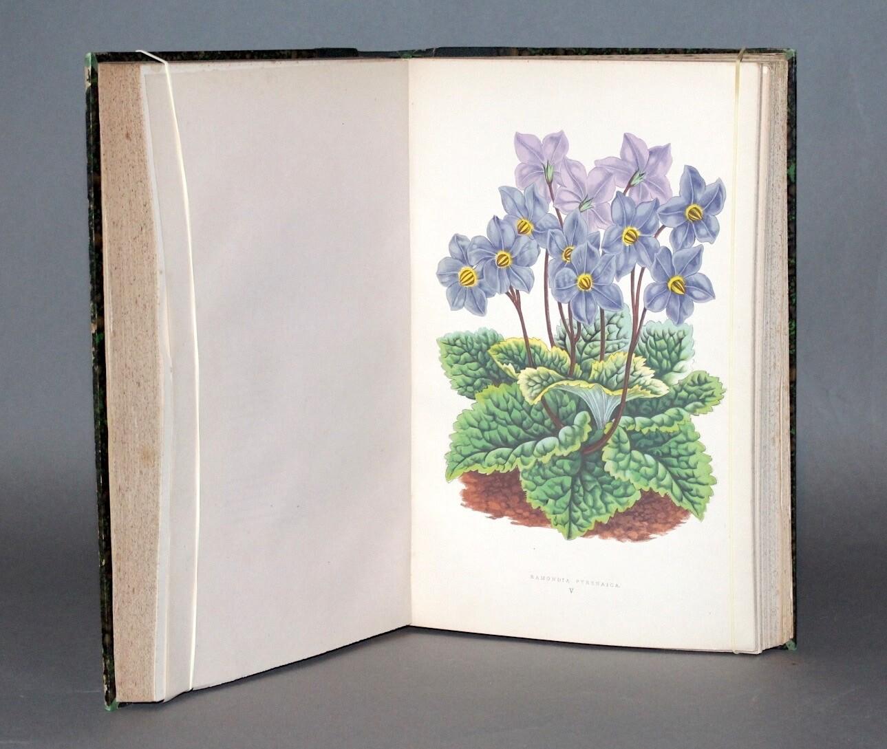 VERLOT, Bernard.- Les Plantes alpines, 1873. 50 planches en couleurs montrant les plus belles fleurs des montagnes.