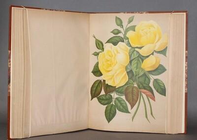 HARIOT.- Le Livre d'or des Roses, 1903. 60 Planches en couleurs.