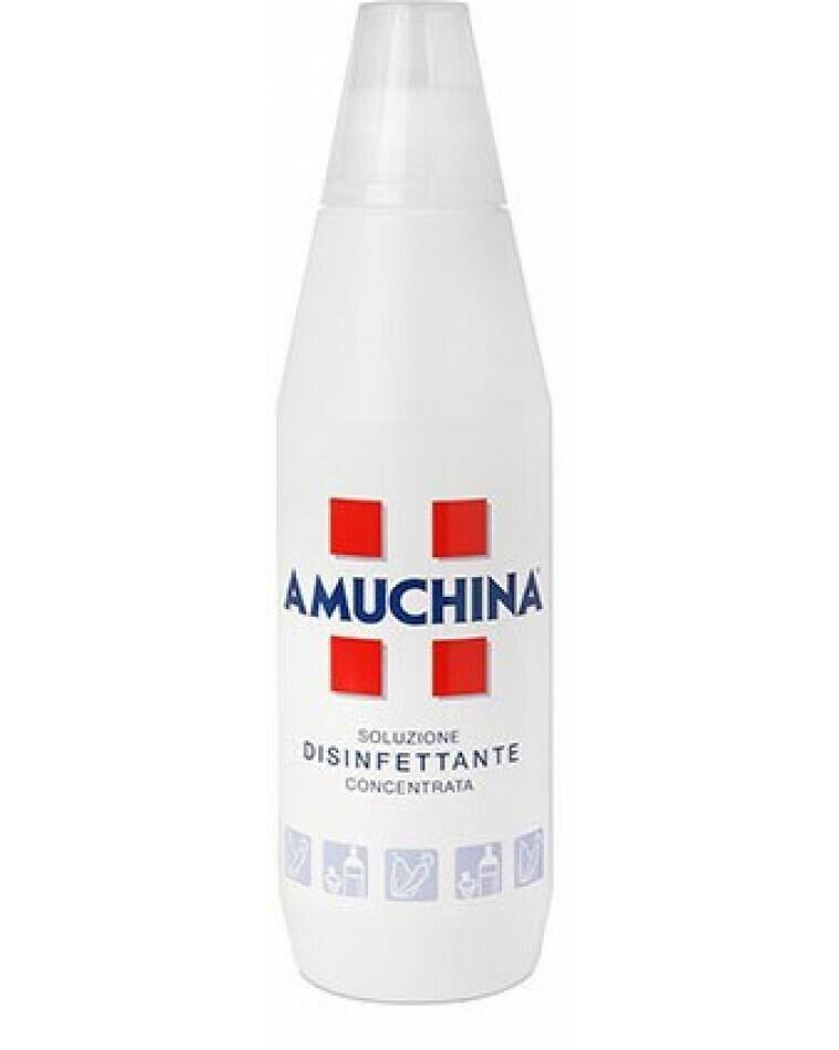 Amuchina Disinfettante Soluzione Concentrata 1 Litro
