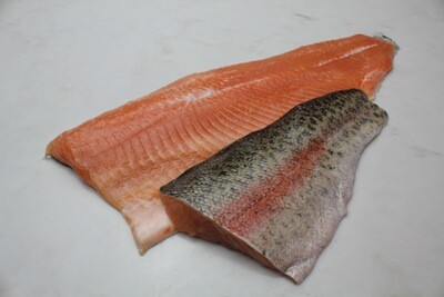 Rainbow Trout - McFarland Springs (1.0 lbs)