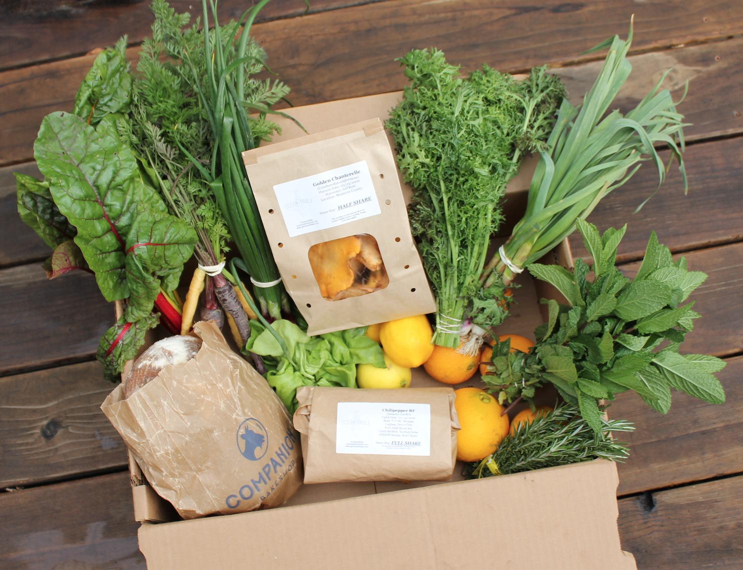 O2T Fish & Farm Box