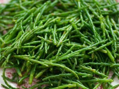 Sea Beans - Jorge Quevedo (0.5 lbs)