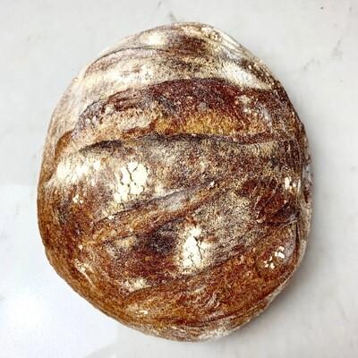 Simple Sourdough Loaf - Companion Bakery
