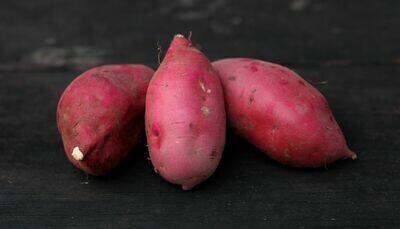 Purple Murasaki Sweet Potatoes - Sea to Sky  (2 lb)