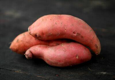Red Garnet Sweet Potatoes - Sea to Sky  (2 lb)