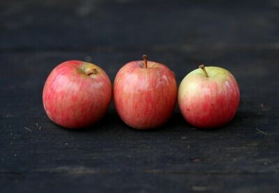Fuji Apples - Live Earth Farm  (1 lb)