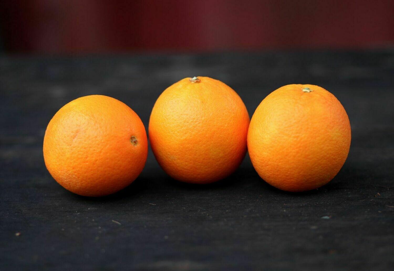 Navel Oranges (3 / bag) - Groundswell Farm
