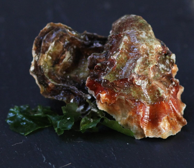 Miyagi Oysters - Tomales Bay Oyster Company