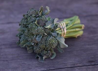 Broccolini - Mariquita Farm (1 bunch)