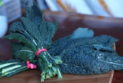 Dino Kale - Live Earth Farm (1 bunch)