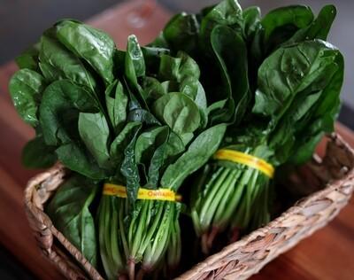 Spinach - Sea to Sky Farm (1 bunch)