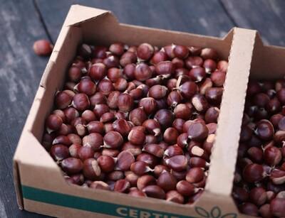 Dry Farmed Fresh Chestnuts - Monte Verde (1 lb)