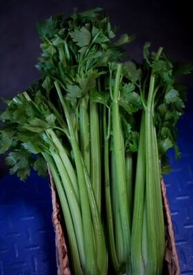Celery - Live Earth Farm (1 bunch)