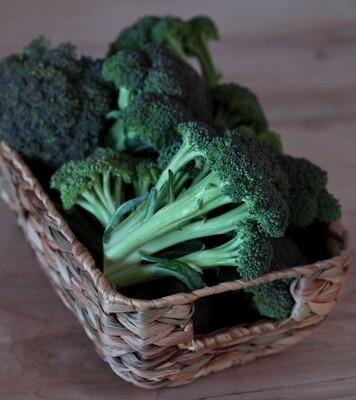 Broccoli - Sea to Sky (1 lb)