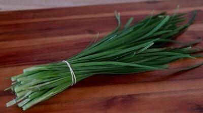 Garlic Chives - Mariquita Farm (1 bunch)