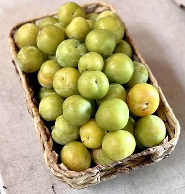 Shiro Plums - Monte Verde (1 lb)