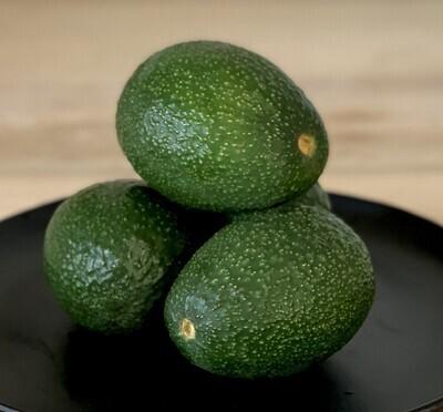 Dry Farmed Hass Avocado MED - Monte Verde (2 ct)
