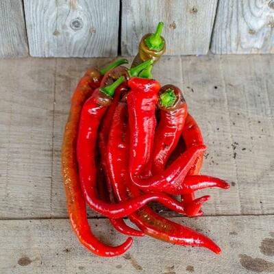 Jimmy Nardello Peppers - Live Earth Farm (1 lb)